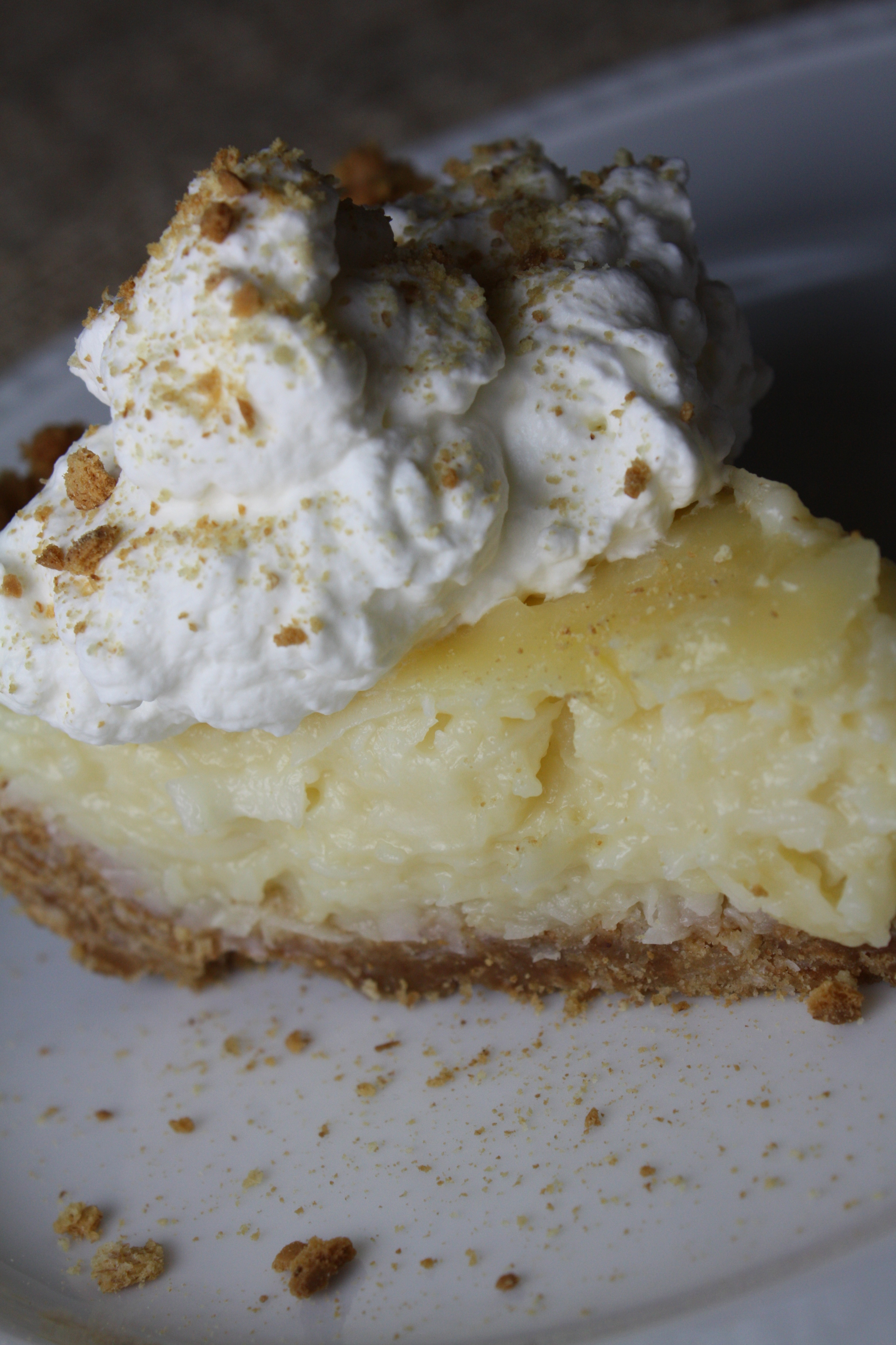 Coconut Custard Pie | The Gourmand Mom