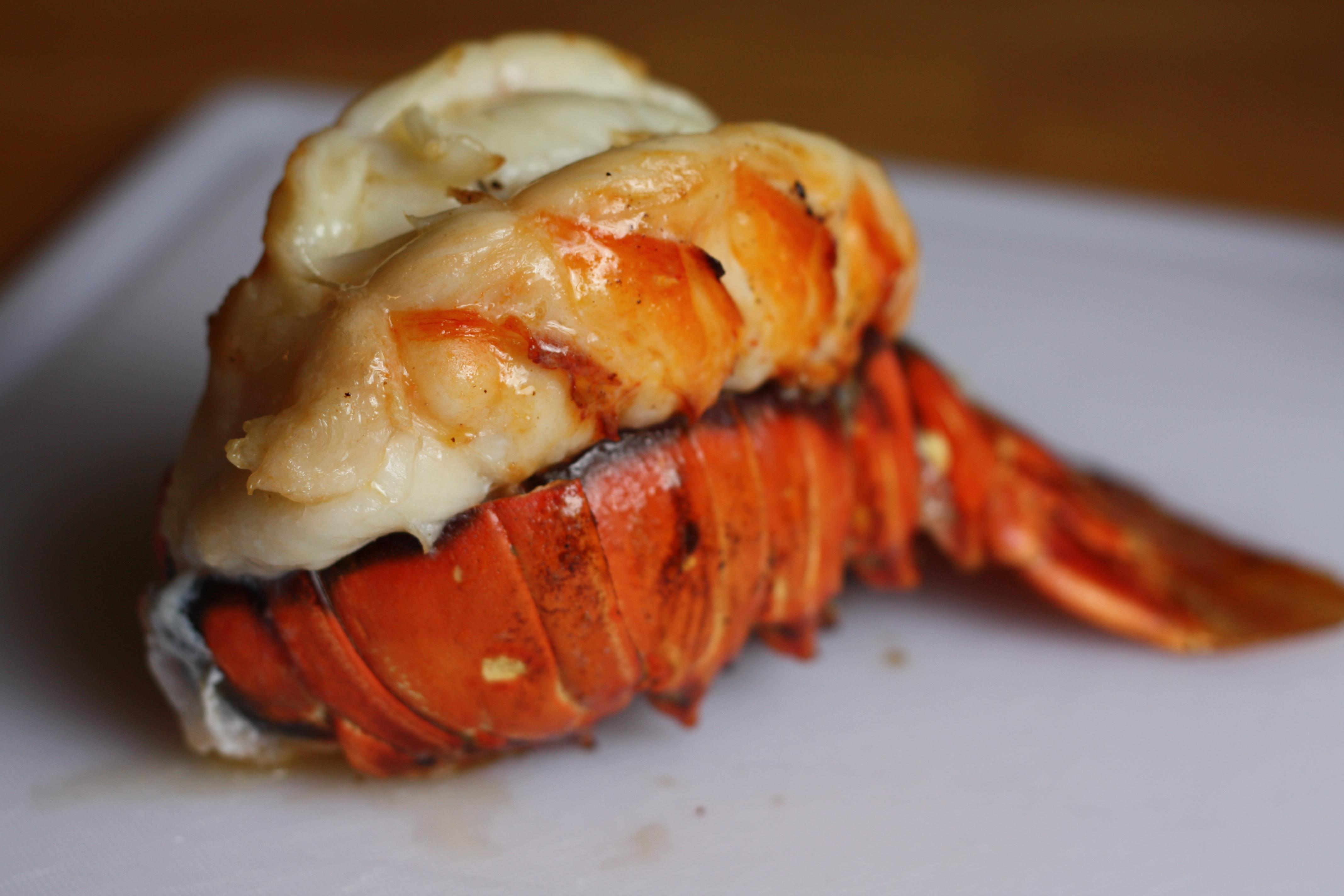 10 lobster pot pie lobster pot pie lobster pot pie bookmark the ...
